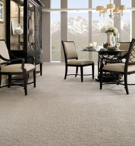 Tuftex Carpet Photo